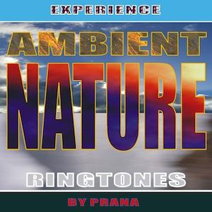 Free Ringtone Download