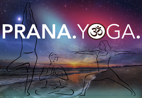 PRANA+copy web